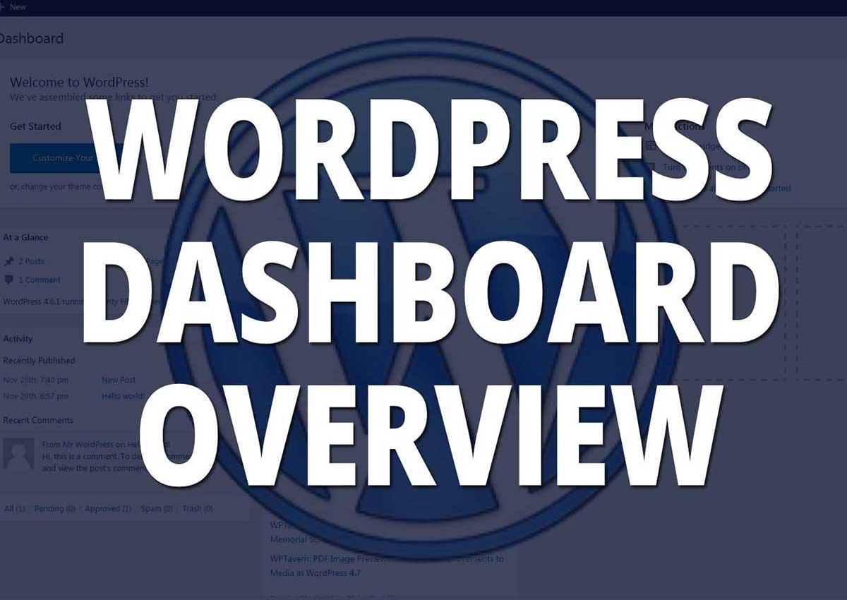 WordPress Dashboard Overview