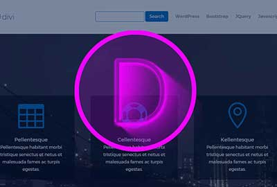 Divi – Add a Search Box to the Divi Theme Menu