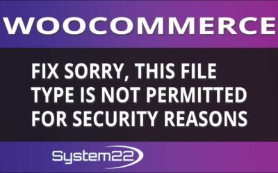 Woocommerce Fix Sorry, this file type is not permitted for security reasons