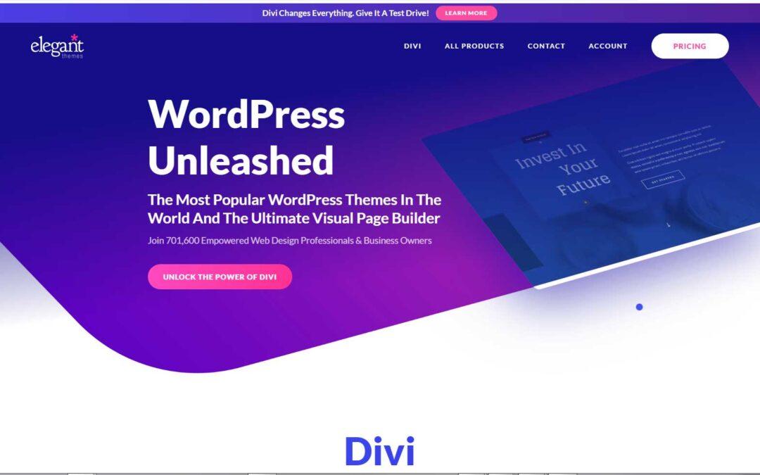 Divi Theme Number one WordPress theme